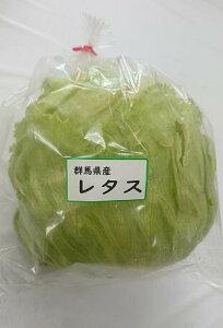 【ムソーの安心野菜】レタス 1玉 減農薬 冷蔵