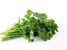 【フルヤの安心野菜】【冷蔵】有機パクチー 30g