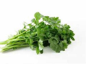【送料無料】【朝市場の新鮮野菜】パクチー(香菜) 100g 1束 x2個セット