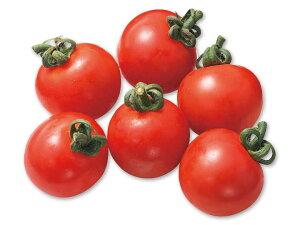 【ムソーの安心野菜】ミニトマト 130g 無農薬