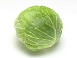 【送料無料】【朝市場の新鮮野菜】キャベツ 8玉サイズ 1個 x2個セット
