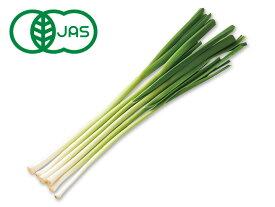 【ムソーの安心野菜】【冷蔵】有機葉にんにく 100g