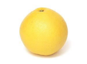 【ムソーの安心野菜】【冷蔵】特別栽培 グレープフルーツ 1個