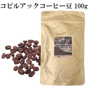 【新入荷】コピルアック コピルアクコーヒー豆 100g 100%野生 送料無料 ギフト 贈答 贈り物 アラビカ種 ジャコウネコ インドネシア 幻のコーヒー テレビで話題 最高級 希