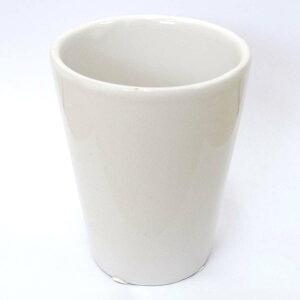 ハイドロカルチャー用 ミニ観葉植物 陶器鉢 ホワイト