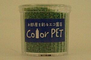 カラーペット(深緑色)6個セット ハイドロカルチャー、ガーデニング、飾り砂、ジオラマなど幅広い用途に適した再生ペットボトルが原料のカラーサンドです。アイデア次第で、より美し
