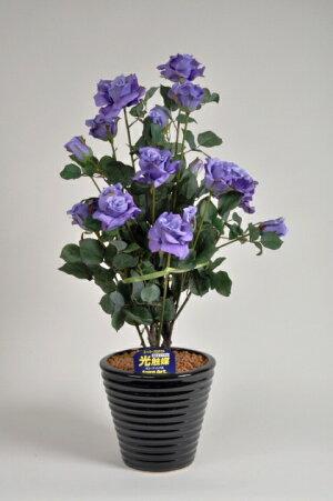 ばら(バラ・薔薇)2本立紫(パープル)光触媒とアミノ酸のダブルコーティング消臭力と抗菌力を発揮するアートフラワー(造花)【smtb-s】