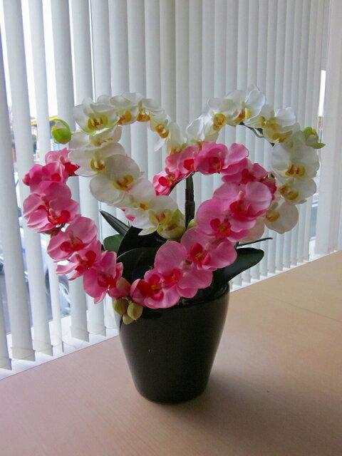 胡蝶蘭 光触媒 ハート(ダブル)小(白黄・ピンク) ハートの形のアートフラワー(造花)でとってもキュートです。贈り物・母の日・新築祝・開店祝・誕生日・記念日・卒業式・入学式・ギフトに【smtb-s】