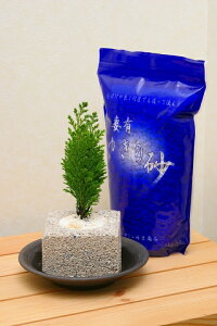 ゆきの砂 1kg 10個セット ペットボトル再生原料を使用した保水性と通気性に優れた人工培土です。水で洗ってくり返し使えます。プランター 鉢 ハイドロカルチャー 植木 鉢植え ガーデニング
