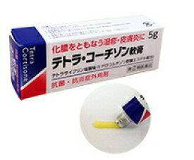 【第(2)類医薬品】 テトラ・コーチゾン軟膏 5g アウトレット【正規品】
