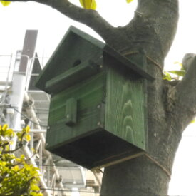 手作り 野鳥用巣箱(シジュウカラ)国産