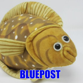 [TST][100+1][HA019]カレイ-righteye flounder-お魚のぬいぐるみ♪TST さかな