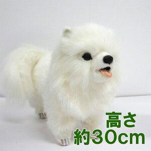 [ハンサ][7324]ポメラニアン(白)46hansa ぽめらにあん pomeranien dog white犬 わんこhansa HANSA リアルな動物のぬいぐるみ