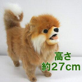 ※ラスト1点※[ハンサ][7018]【ポメラニアン(茶)39】hansa ぽめらにあん pomeranien dog犬 わんこhansa HANSA リアルな動物のぬいぐるみ
