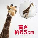 【送料無料】ハンサ[5256]キリンhansa giraffeサバンナ 砂漠hansa HANSA リアルな動物のぬいぐるみ※離島・一部地域・海外は別途中…