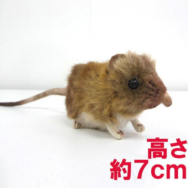 ハンサ[7233]ハネジネズミhansa elephanr mouseサバンナ 砂漠hansa HANSA リアルな動物のぬいぐるみ
