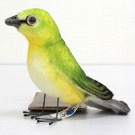 [ハンサ][7246]メジロめじろ-white eyed bird-HANSAのリアルな動物ぬいぐるみです。