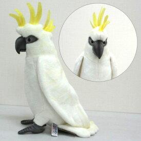 [ハンサ][2654]タイハクオウム-White Cockatoo-ヤキモチを妬いたりする可愛いところがあるよ!HANSAのリアルな動物ぬいぐるみです。※沖縄・離島・海外へは発送不可※☆※