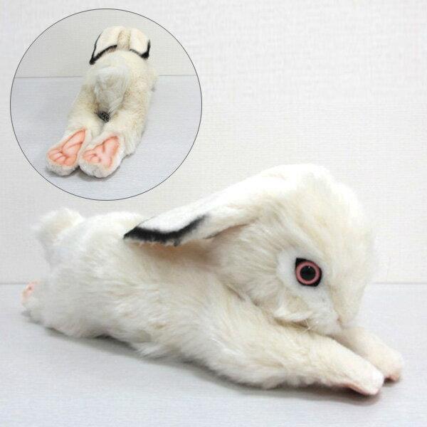 [ハンサ][6523]シロウサギ-BUNNY WHITE-寝そべり姿のうさぎさん♪HANSAのリアルな動物ぬいぐるみです。