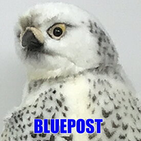 [ハンサ][4708]シロハヤブサ-snow falcon-※沖縄・離島・海外は発送不可
