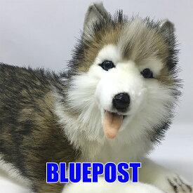 [ハンサ][5832]シベリアンハスキーhansa ぬいぐるみ ハスキー husky大型犬 わんこhansa HANSA リアルな動物のぬいぐるみ