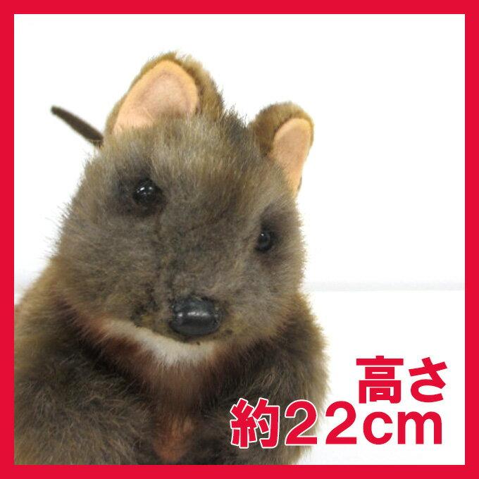 【2018年新商品】ハンサ【クアッカワラビー 22】[7362]quokkaオセアニアhansa HANSA リアルな動物のぬいぐるみ
