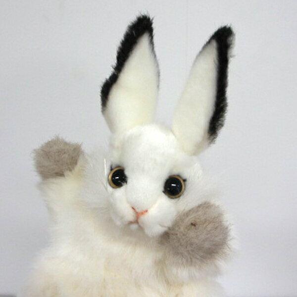 ハンサ【パペット】シロウサギ[7156]うさぎ グッズ ハンドパペット ぬいぐるみhansa HANSA リアルな動物のぬいぐるみ