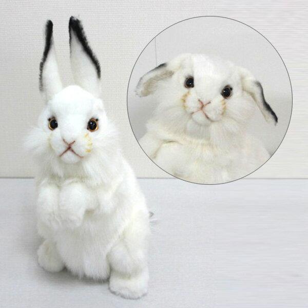 耳が曲がります。[ハンサ][3313]シロウサギ-WHITE RABBIT-おとぎ話に出てくるようなうさぎさんです。HANSAのリアルな動物ぬいぐるみです。ウサギ・ラビット【動物好きさんのホワイトデーにおすすめ】
