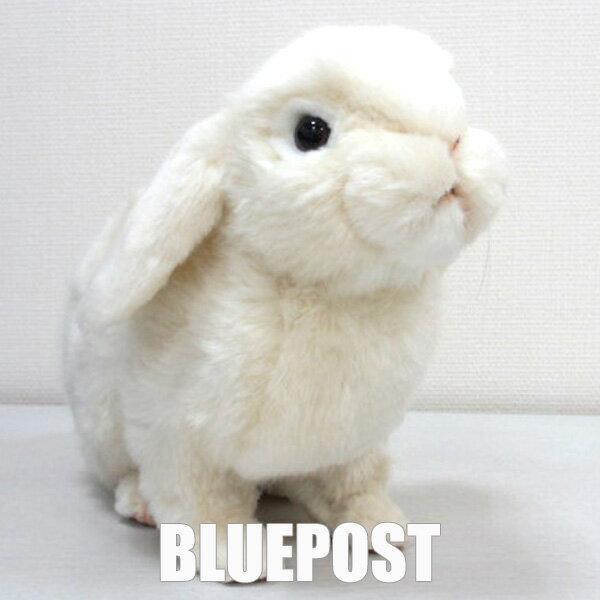 [ハンサ][7024]ホーランド・ロップどっしり貫禄のある印象ですHANSAのリアルな動物ぬいぐるみです。ウサギ・ラビット【動物好きさんのホワイトデーにおすすめ】