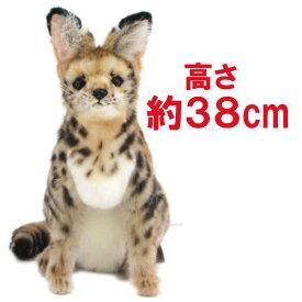 [ハンサ][7373]サーバルキャット(座り)hansa さーばるきゃっと african serval cathansa ぬいぐるみ サバンナ 砂漠hansa HANSA リアルな動物のぬいぐるみ※沖縄・離島・海外へは発送不可