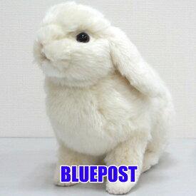 [ハンサ][BH7024]ホーランド・ロップどっしり貫禄のある印象ですHANSAのリアルな動物ぬいぐるみです。ウサギ・ラビット