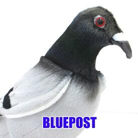 [ハンサ][6299]ハトhansa 動物 ぬいぐるみ リアル鳩 はと