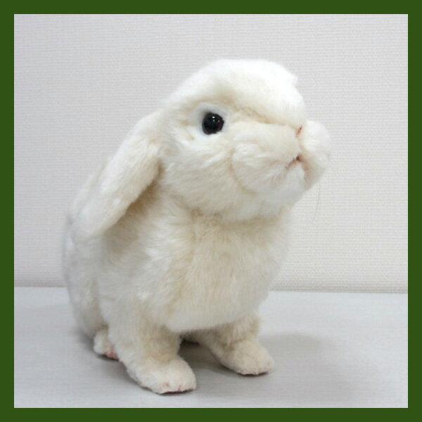 [ハンサ][7024]ホーランド・ロップどっしり貫禄のある印象ですHANSAのリアルな動物ぬいぐるみです。ウサギ・ラビット【うさぎまつり】