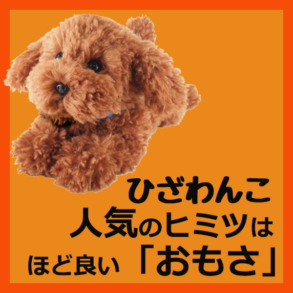 サンレモン ひざわんこトイプードル【ブラウン】[P-3032]犬 いぬ イヌ ワンちゃん ワンコ ひざいぬhizawanko hizainu