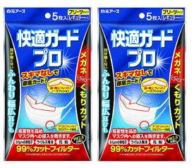 白元アース 快適ガードプロ マスク プリーツタイプ レギュラーサイズ 5枚入×2個セット