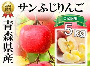 【送料無料】青森県産りんご ご家庭用 訳あり サンふじ5kg (約14玉〜20玉入り)産地直送