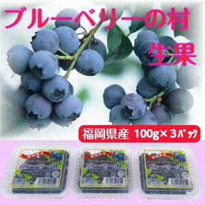 ブルーベリー生果ギフト 100g×3パック 福岡県産 生 完熟 果物 旬 冷蔵 プレゼント