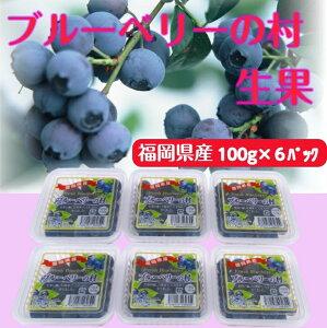ブルーベリー生果ギフト 100g×6パック 福岡県産 生 完熟 果物 旬 冷蔵 プレゼント