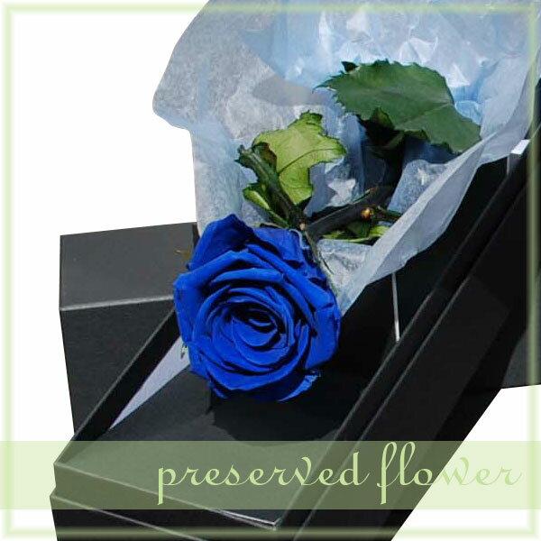 プリザーブドフラワー 幸せのブルーローズ(バラを1本添えて)/ お花のギフト【RCP】【コンビニ受取対応商品】【10P05Nov16】