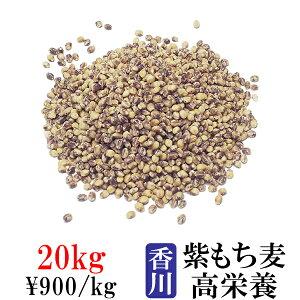 讃岐もち麦 ダイシモチ 20kg 紫もち麦ごはん 国産 高栄養 ダイエット食品 置き換え 満腹感 食物繊維 20キロ 業務用 激安卸販売 仕入 送料無料