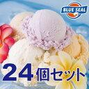 【アイスクリーム】ブルーシールギフトセット24(送料込) ランキングお取り寄せ