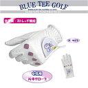 ☆【女性用・片手】ブルーティーゴルフ BLUE TEE GOLF California 全天候型・ストレッチ機能ゴルフグローブ