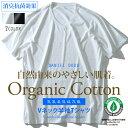 【大きいサイズ】【メンズ】DANIEL DODD オーガニックコットン Vネック半袖肌着 消臭抗菌 azu-1801