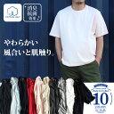 【タダ割】【送料無料】【大きいサイズ】【メンズ】DANIEL DODD 無地クルーネック半袖Tシャツ azt-160211