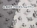ニット生地 40/双糸天竺:ブサかわ犬フレブル&パグプリント
