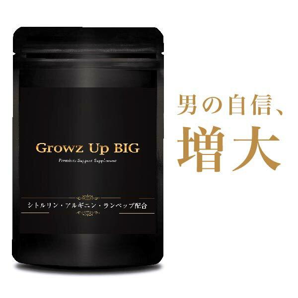 【送料無料】Growz Up BIG 60粒※精力剤や薬ではなくサプリメント シトルリン サプリメント サプリ 健康サプリ 健康サプリメント 男性 メンズ サプリ 健康食品 栄養機能食品アルギニン クラチャイダム マカ シトルリン スッポン すっぽん にんにく