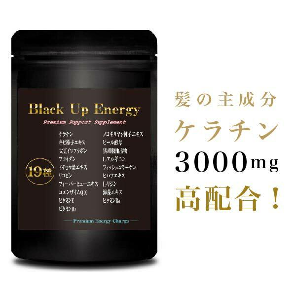 【送料無料】Black Up Energy 60粒 サプリ 健康サプリメント 健康サプリ 男性 メンズ 髪 髪の毛 頭皮 ノコギリヤシ 亜鉛 ビタミン