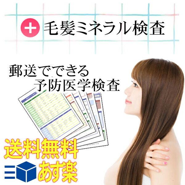 らべるびぃ予防医学研究所 毛髪ミネラル検査