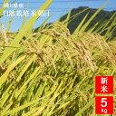 【無肥料 自然栽培米】【農薬不使用】【玄米】【令和1年産】 岡山県産 朝日 5kg 真庭市 旧北房町産