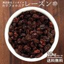 レーズン ノンオイル 10kg (1kg×10) 送料無料 無添加 砂糖不使用 [ 訳あり 無選別 不揃い ドライフルーツ カリフォル…